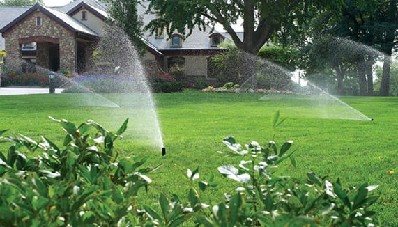 Rainman Irrigation